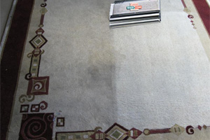 area_rug_cleaning