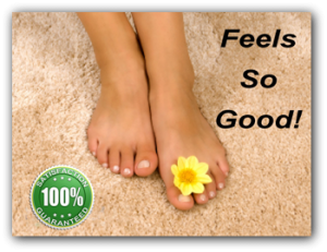 destin fl carpet cleaning - fresh and clean