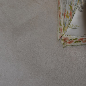 dry carpet cleaning - pet stain after