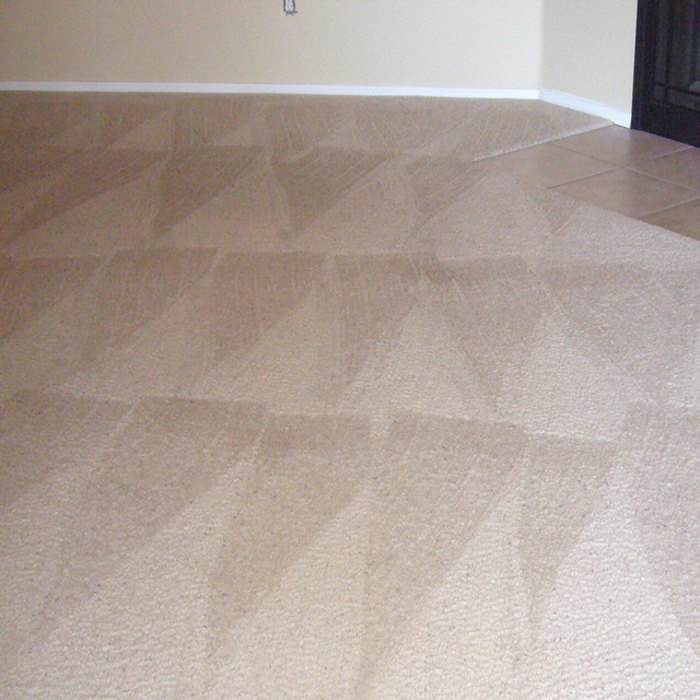 dry carpet cleaning - dry carpet cleaning after