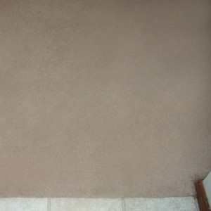 dry carpet cleaning - carpet cleaning - carpet to tile after