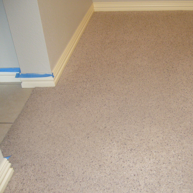 dry carpet cleaning - carpet cleaning - dry carpet cleaning power after