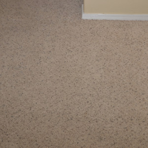 dry carpet cleaning - carpet cleaning - dry organic carpet cleaning - stains after
