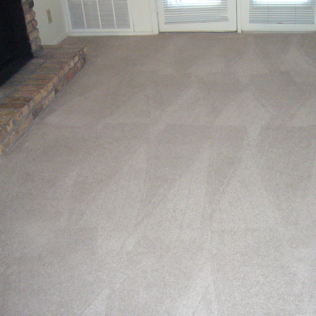 Dry Carpet Cleaning - dry carpet cleaning sample