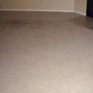 dry carpet cleaning - dry carpet cleaning before