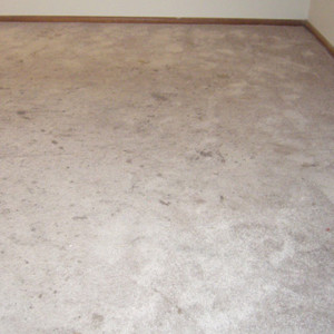 dry carpet cleaning - carpet cleaning before