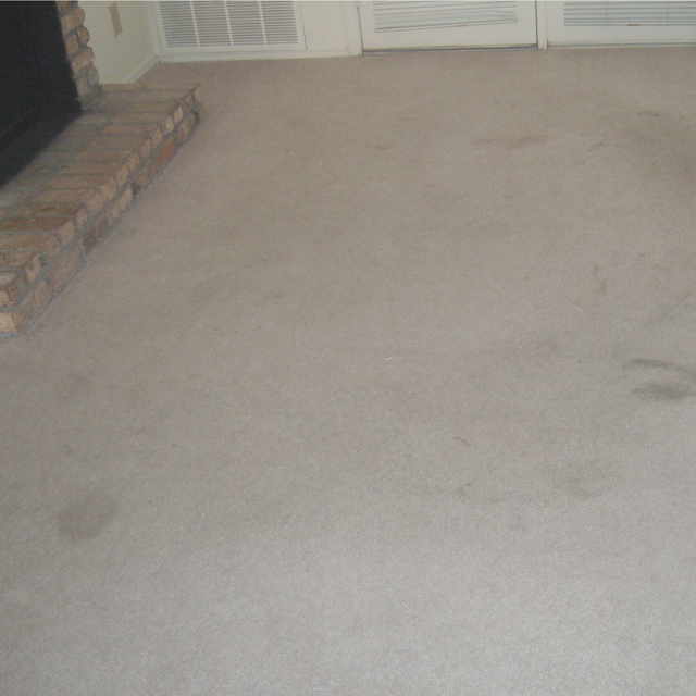 Dry Carpet Cleaning - the power of dry