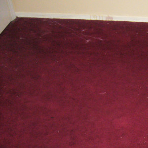 dry carpet cleaning - before