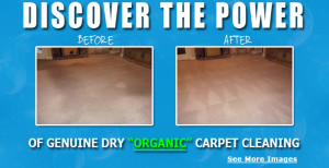 dry carpet cleaning destin florida