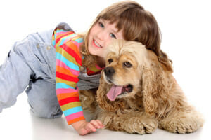 carpet cleaning destin - pet stain & odor services