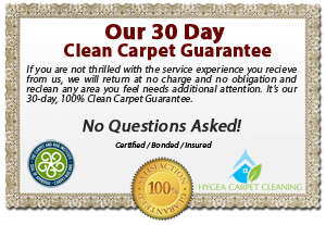 Hygea - carpet cleaning Fort Walton Beach