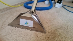 Hygea carpet cleaning service Destin Florida