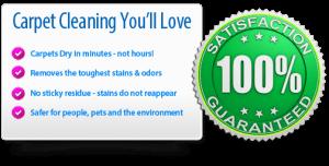 Carpet Cleaning Benefits - Carpet Cleaning Destin FL