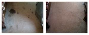 Carpet cleaning Destin and Panama City Florida